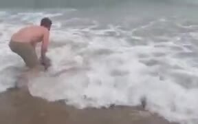 Baby Orca Rescued By A Man