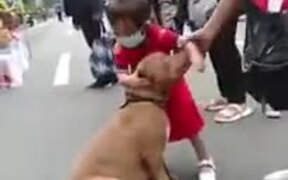 Small Girl Does Not Want To Leave A Dog