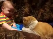 4-Legged Baby Sitter Won't Take No For An Answer