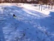 Intelligent Dog Goes Snowboarding By Itself