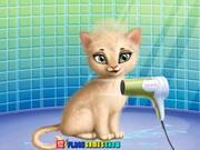 Cat Hair Salon Walkthrough