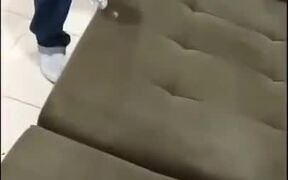 A Fully Liquid-Proof Couch