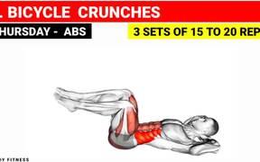 Full Training Of Gym Workout Plan