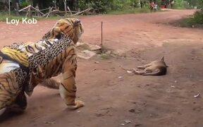 Fake Tiger Prank Dog Vs 2 Tiger