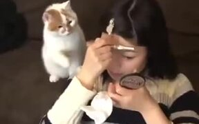 Cats Hate Makeup