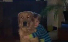 Cute Doggo Hugs Back The Child