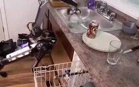 Dishwashing Robot Works Well