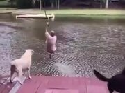 Dogs Gets Scared For Their Owner