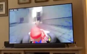 Chasing A Cat With A Mario Kart