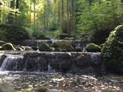 A Relaxing View And Sound Of The Waterfall