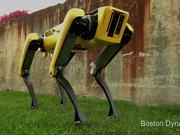 Dogs Of The Future The Spotmini