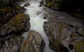 Panning Down a Fast Flowing River