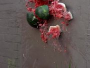 Watermelon Smash in Slow Motion