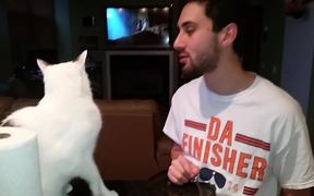 Cat Punches Owner In Face