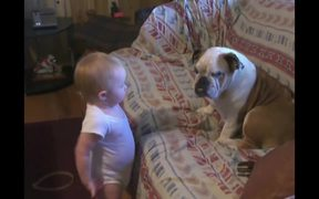 Cute Dogs And Babies