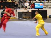 Insane Wushu Championship