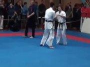 Incredible Karate Knockout