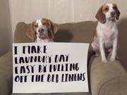 Ultimate Dog Shaming