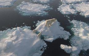 WWF: Earth Hour