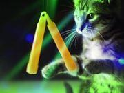 Meow Mix Race
