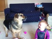 Baby Laughs At Bubble Eating Dog
