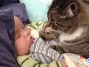 Cats Loving Babies
