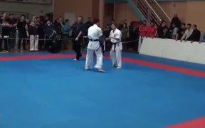Epic Karate Knockout
