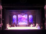 Deise Mendonça Ballet Dancer