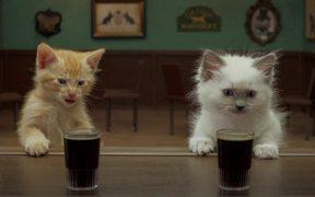 Jake O'Connor's: A Kitten Walks into a Bar