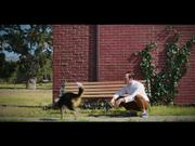 Volkswagen Commercial: A Doggy Tale