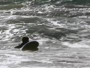 desmond-surfing