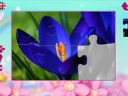 Puzzles for Girls: Flowers