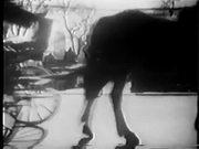 Supp-Hose (1950s)