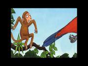 Monkey Puzzle - James Skerritt