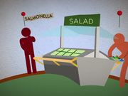 Social Animation - Healthmap