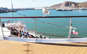 Unreasonable at Sea: Embarkation