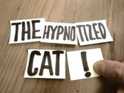 Meow: The Great Hypnosis Show!