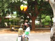 Time Lapse of a Balloon Vendor