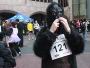 Great Gorilla Race