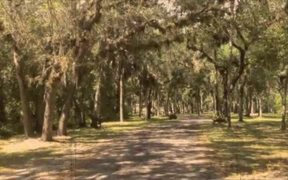 The Ranch Beautiful Piece of Property in Florida