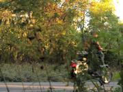 Dude Man Moped
