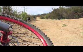 Glendale Downhill Mountain Biking