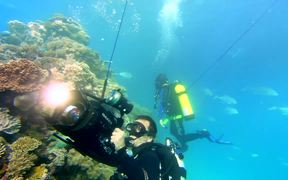 Google Video: Explore the Ocean with Google Maps