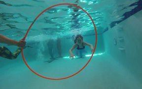 Mermaid Tail Games - Mermaid Races