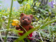The Summer Bears