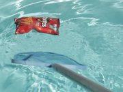 Doritos Overboard