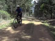 Jimna State Forest - MTB Trail Riding