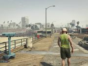 Grand Theft Auto V - Steady Cam Test
