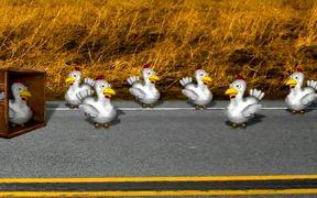 Highway Chickens