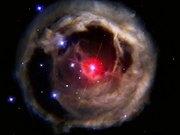 V838 Monocerotis revisited
